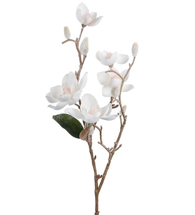 Magnolia med is 65 cm