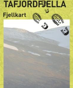 CK 39 Reinheimen og Tafjordfjella fjella