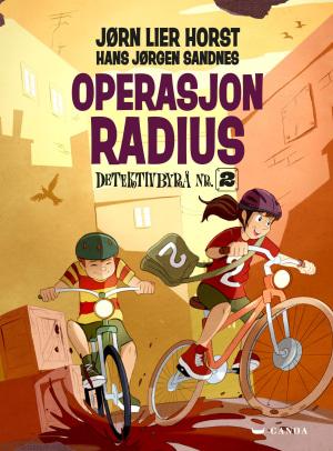 Detektivbyrå nr. 2: Operasjon radius