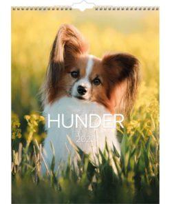 Veggkalender GRIEG 2022 Hunder