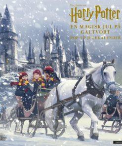 En magisk jul på Galtvort