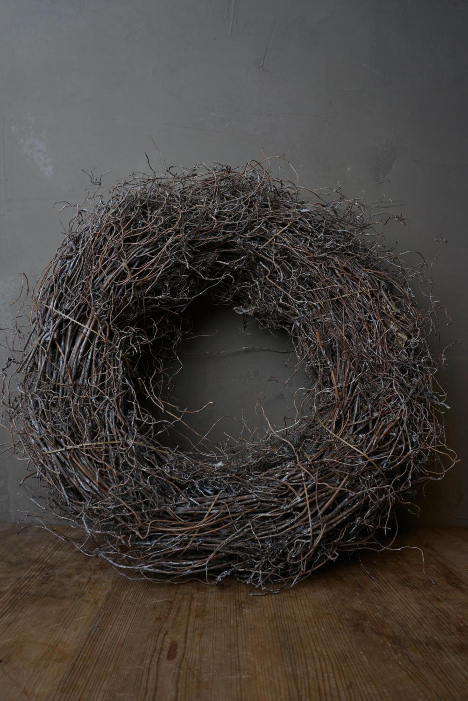 Krans Fern Root