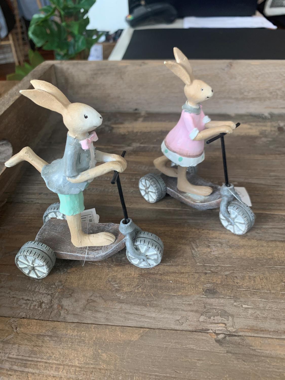 Påske kanin på sykkel JENTE