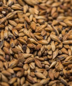 Abbey malt 40-50 EBC (1kg)