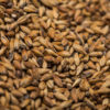 Munich malt type 1 (12-18 EBC)