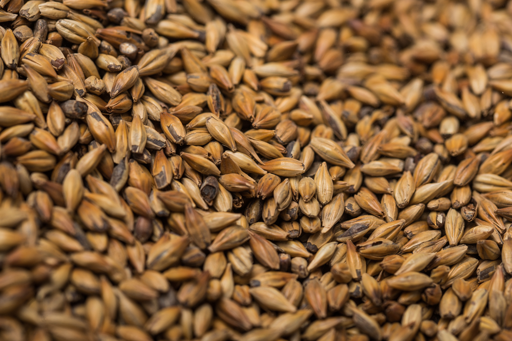 Bohemian floormalted wheat (1kg)