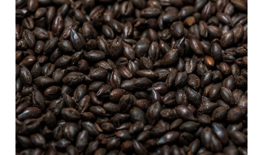 Roasted Barley (1000-1300 EBC)