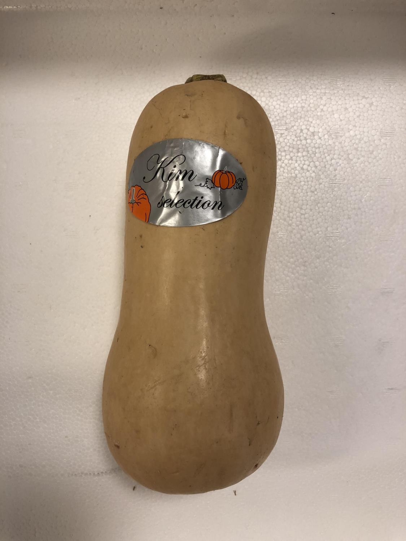 'Flaskegresskar Bottle Pumpkin PR KG