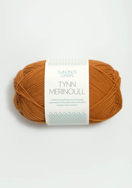 2537 Tynn Merinoull Karri
