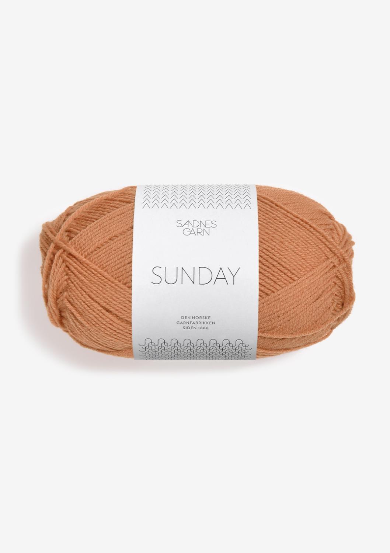 2534 Sunday Fudge