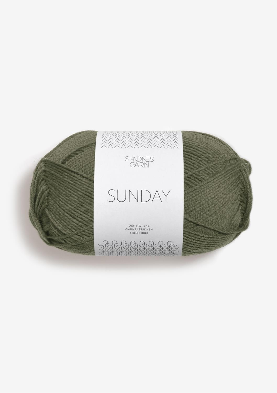 9561 Sunday Vintermose