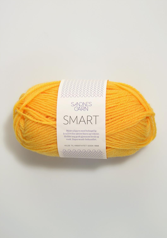 2206 Smart Gul