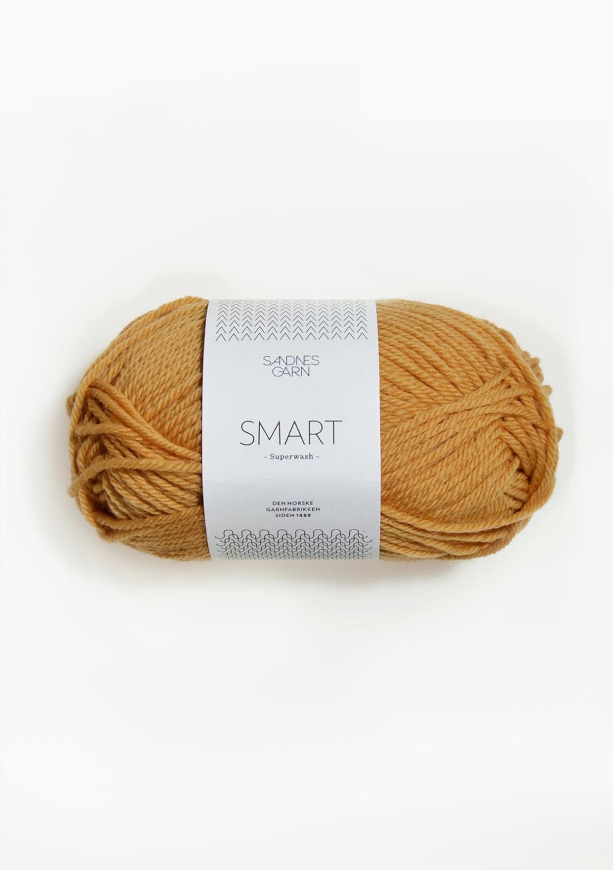 2324 Smart Ravgul