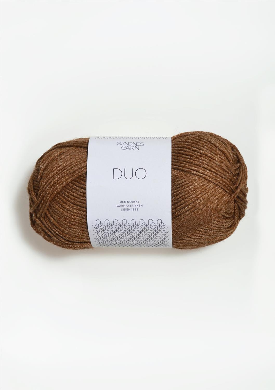 2564 Duo Gyllenbrun