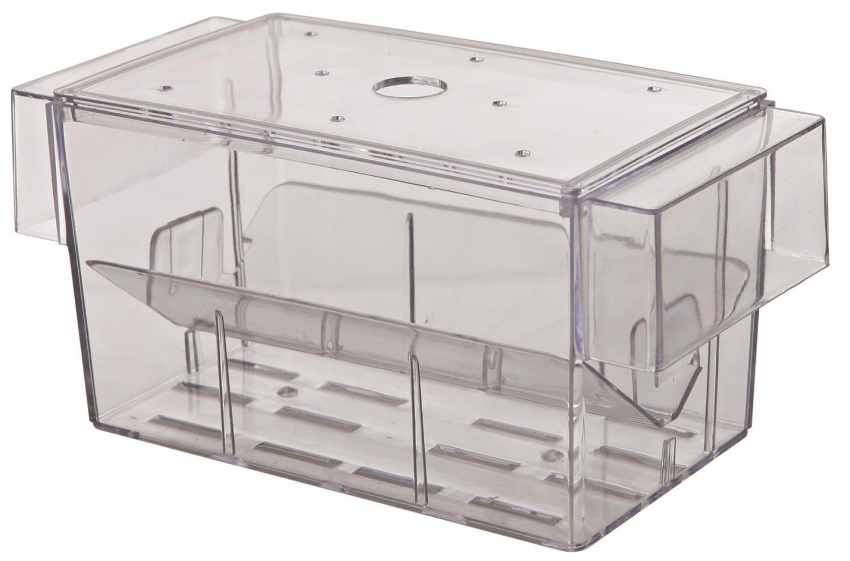 Guppytank 13x7,5x7,5cm