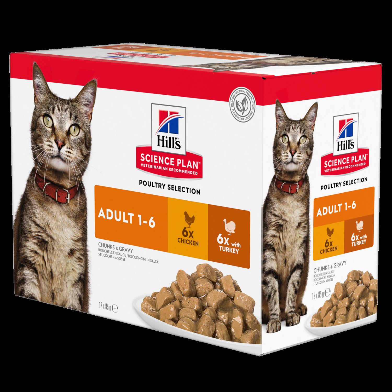 Hill's feline Adult chicken & turkey 12x85g