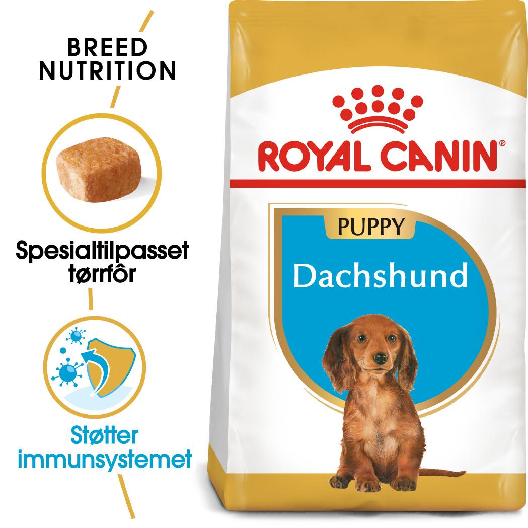 Royal Canin Dachshund Puppy 1,5kg