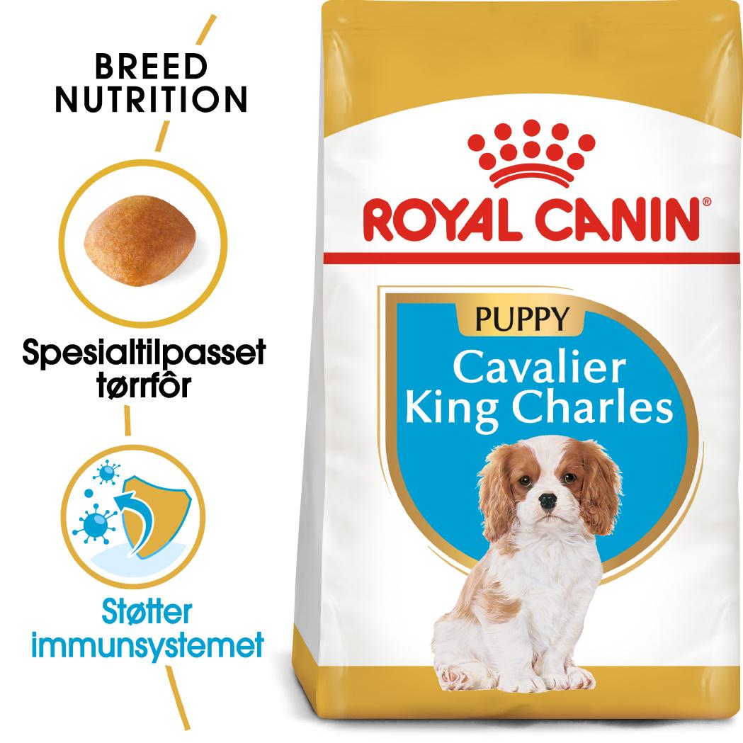 Royal Canin Cavalier King Carles Puppy 1,5kg