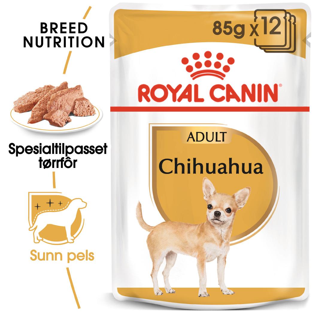 Royal Canin Chihuahua våtfor 85gx12stk