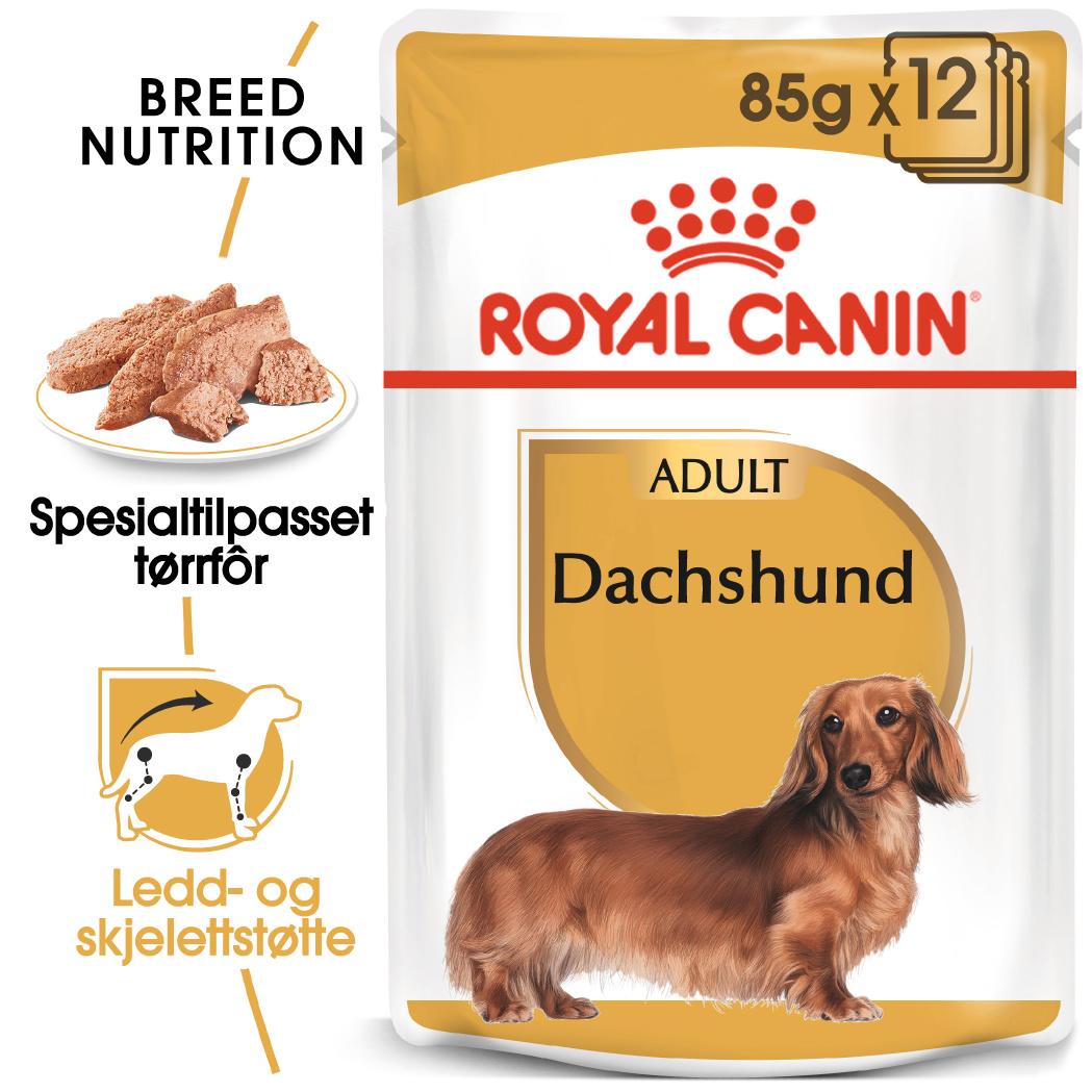 Royal Canin Dachs våtfor 85gX12stk