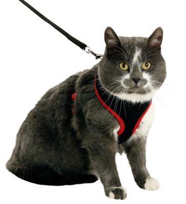 Kattesele nett med kobbel S/kattunge