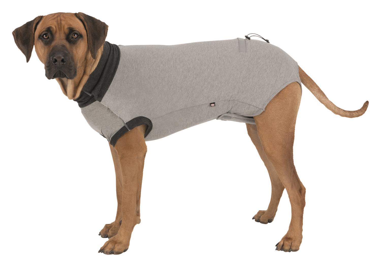Beskyttelse drakt til hund L 55cm grå