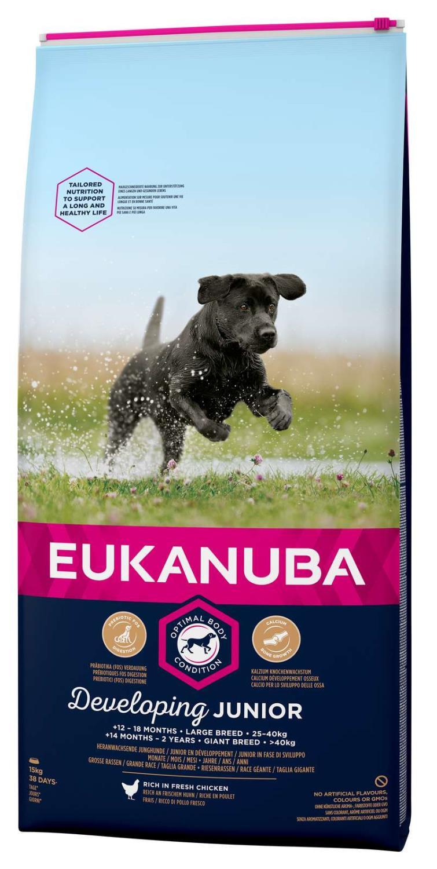 Eukanuba Developing junior large breed 15kg